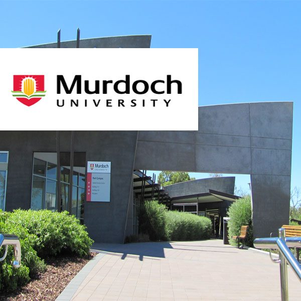 murdoch university coursework regulations Courses and specialisations offered by middlesex university dubai.